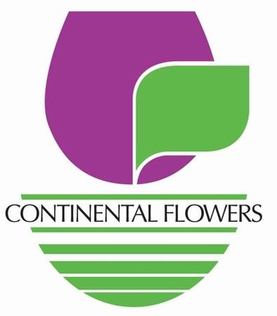 Continental v2
