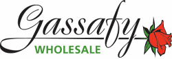 Gassafy Wholesale